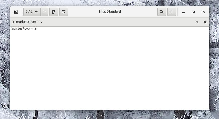 leeres Tilix Terminal