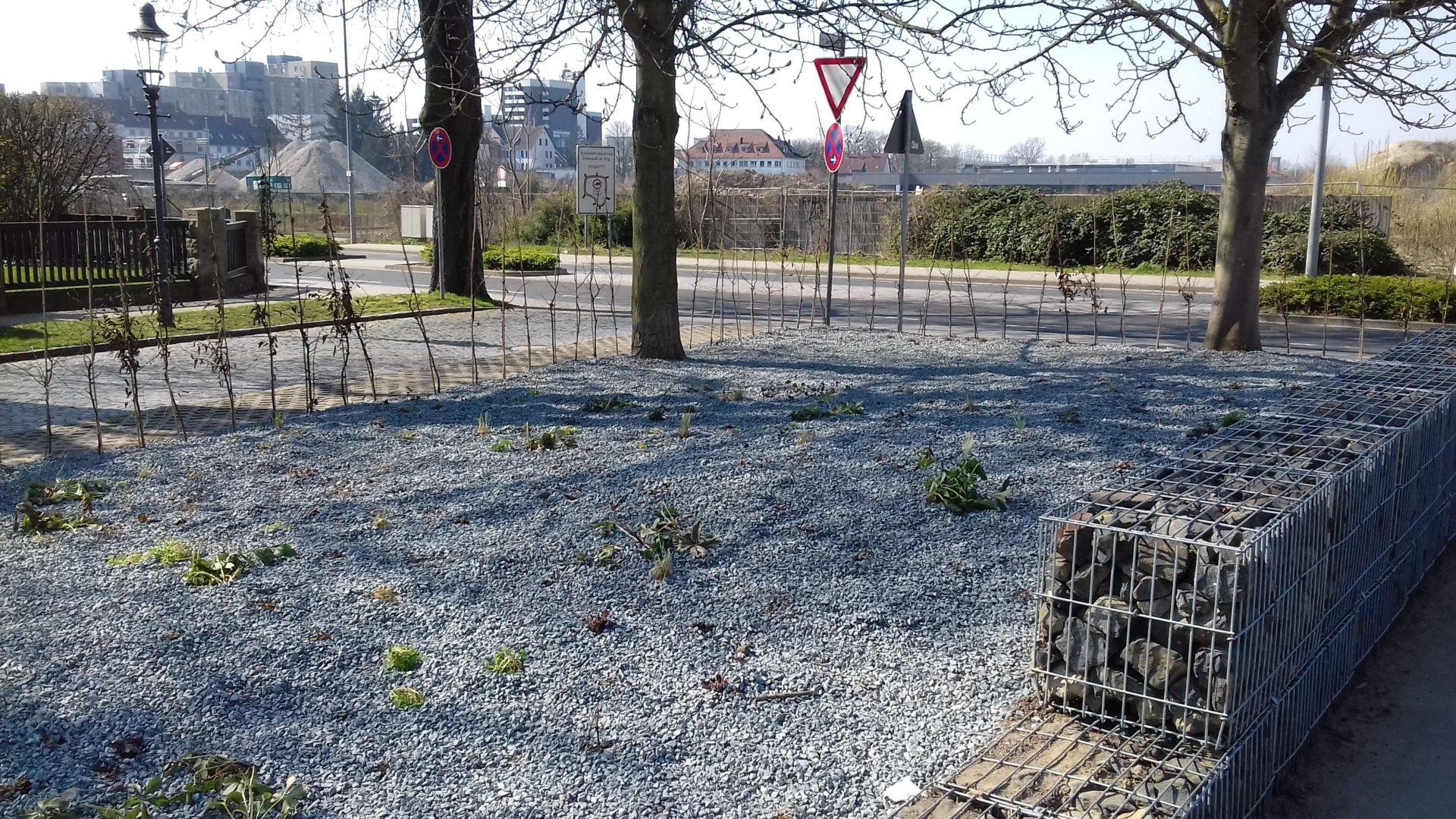 Man sieht einen Steingarten neubau am Mittwelweg, wo füher Blumenrabatte waren